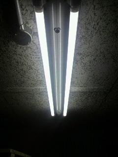 ECOな蛍光灯